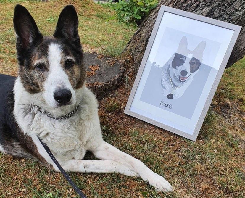 Kunstdruck mit Hund